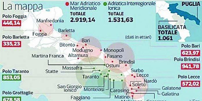 Zes In Puglia Borraccino Fatto Un Altro Passo In Avanti Per Le Zone Economiche Speciali